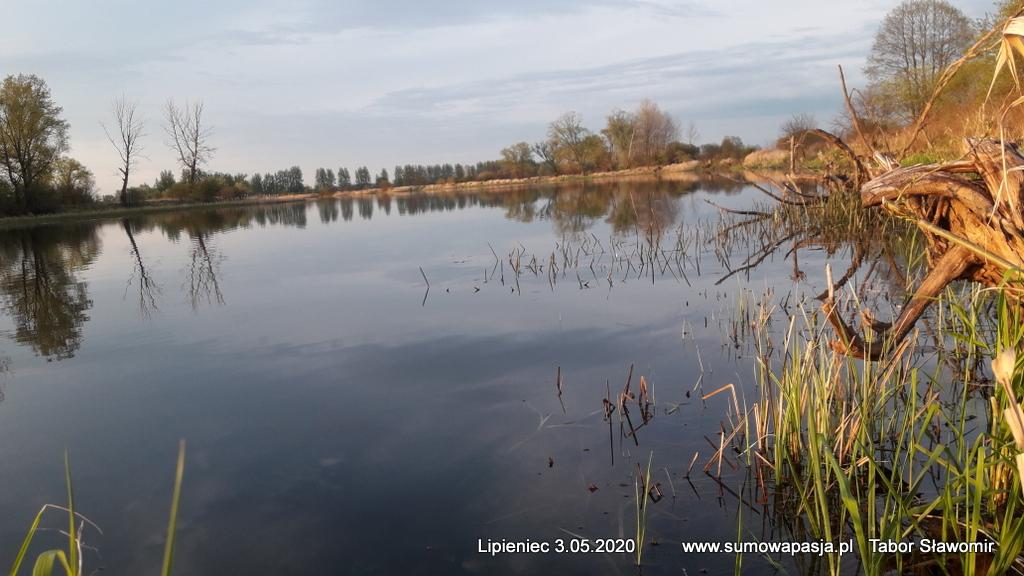 sumowapasja.pl/images/imagehost/47e9c5cd424079ca36cb4210837655c7.jpg