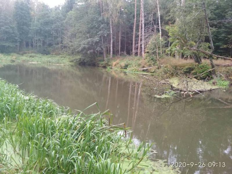 sumowapasja.pl/images/imagehost/5b3d734c04195347d3120c8b2033c483_resized.jpg