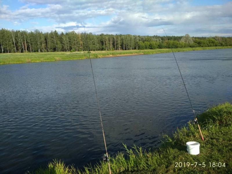 sumowapasja.pl/images/imagehost/97b7138fdb40278da2587198f30ab77c_resized.jpg