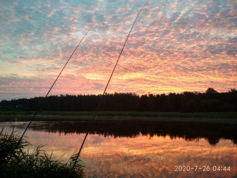 sumowapasja.pl/images/imagehost/da8a38439d904303d2eb670af6831496_resized.jpg