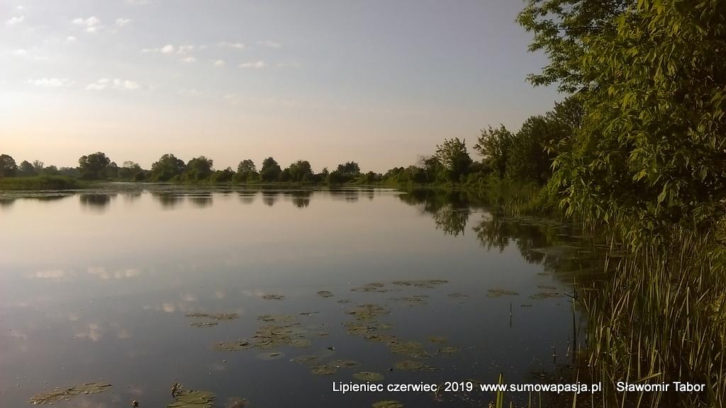 sumowapasja.pl/images/imagehost/e2a7b04b2cc3396733e89d6f9c5f7b7b.jpg